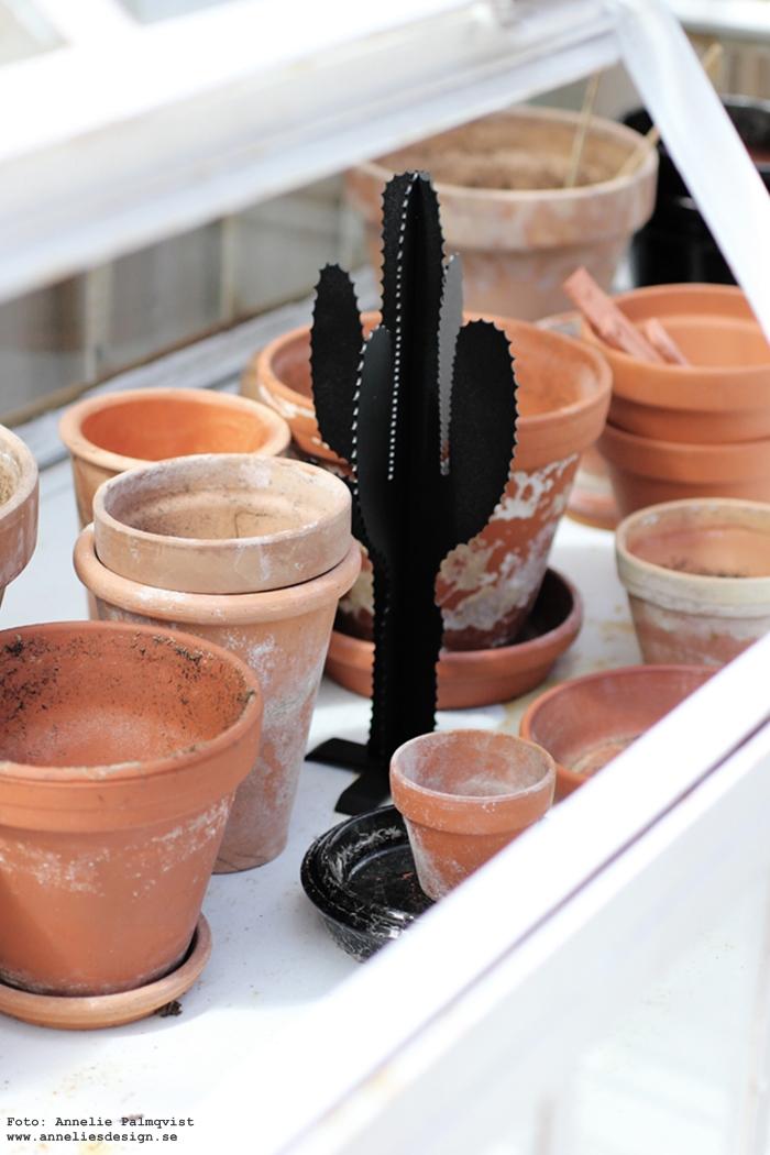annelies design, kaktus, kaktusar, 3d, växthus, kruka, krukor, miniväxthus, inredning, detaljer, terracotta, loppis,