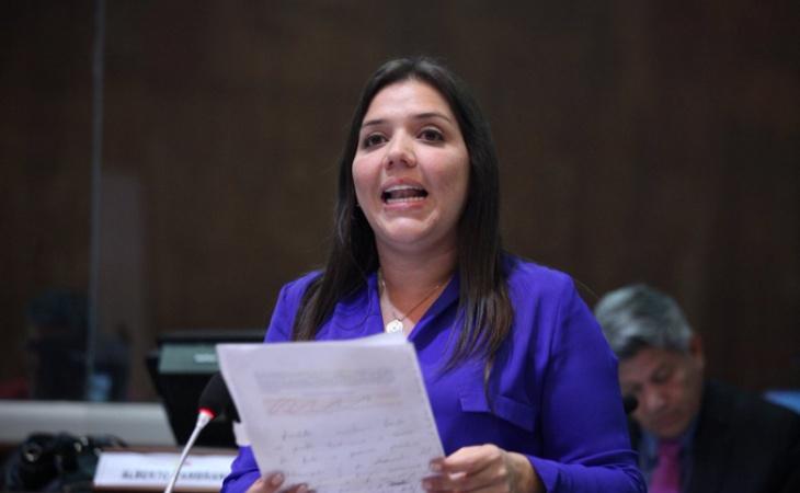 Vicuña es psicóloga de 40 años que se desempeñaba como ministra de Desarrollo Urbano