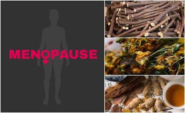 obat alami gejala menopause