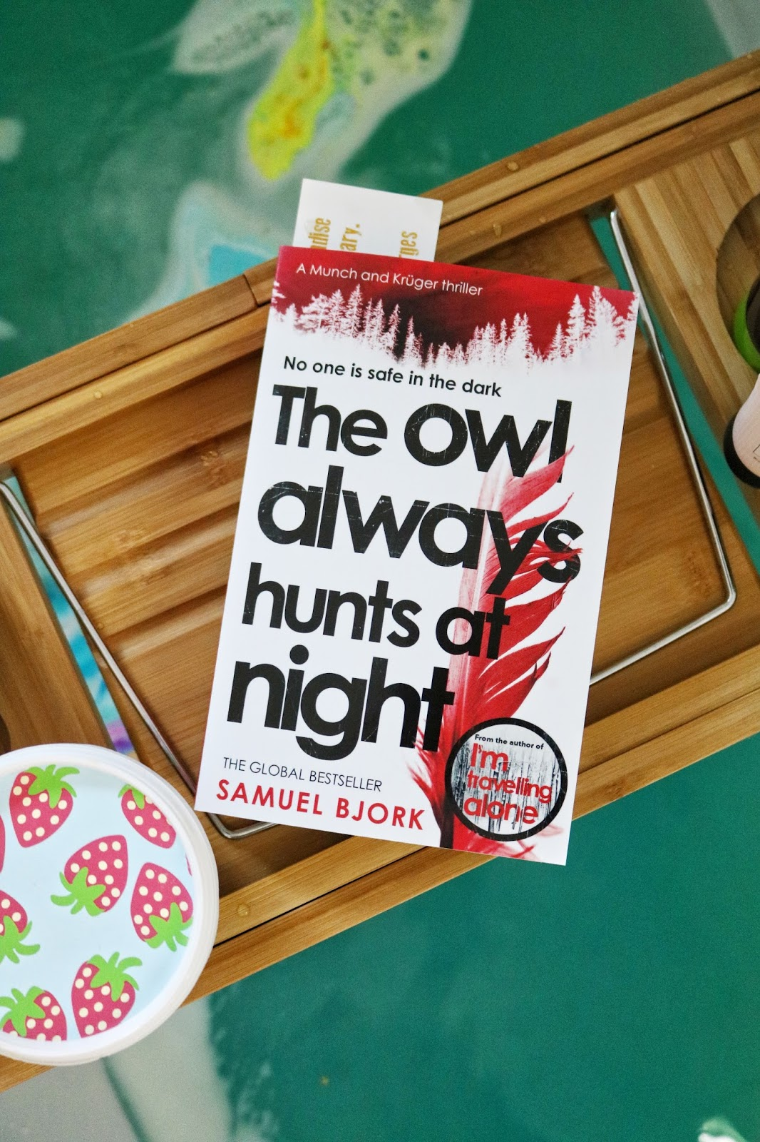 Blog Tour: The Owl Always Hunts At Night