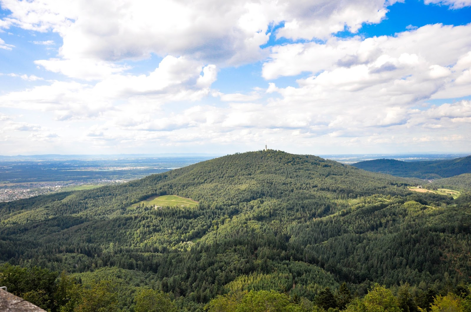 The Black Forest seen from the top of the Yburg Castle tower, Yburg, Germany