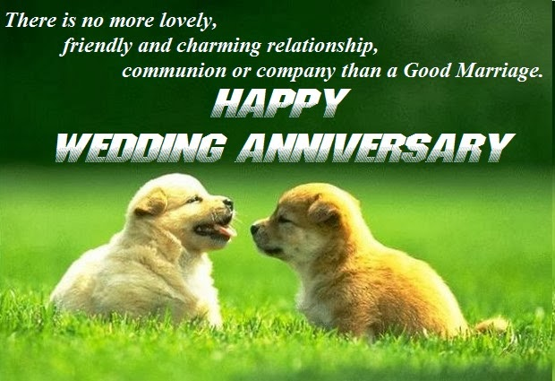 Wedding anniversary message wishes quotes cards saying
