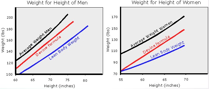 Lean Body Weight