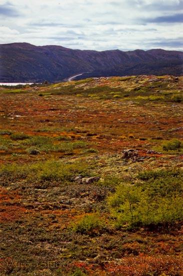 カナダ東部、ラブラドールの風景、ルート510