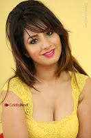 Cute Telugu Actress Shunaya Solanki High Definition Spicy Pos in Yellow Top and Skirt  0602.JPG