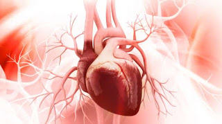 Kesehatan psikologis yang positif dapat meningkatkan kesehatan jantung secara keseluruhan