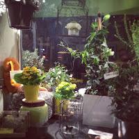 intérieur boutique carrement vert