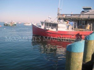 Chatham Harbor Cape Cod