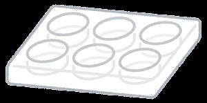 細胞培養プレートのイラスト(6ウェル)