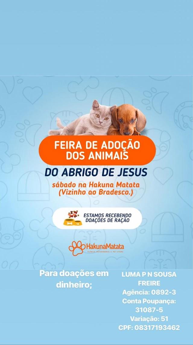 Feira de adoção de animais ( do abrigo de Jesus ) neste próximo Sábado na cidade de Apodi, RN