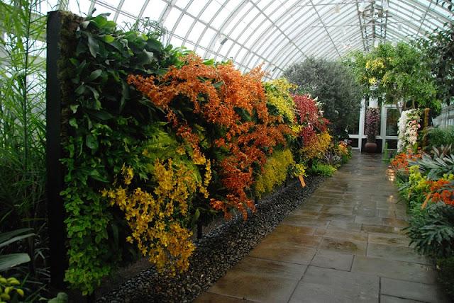 Visita ao Jardim Botânico do Bronx