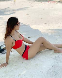 Neha Malik in Red Bikini Beautiful Actress Model Sizzling Spicy Bikini Pics .XYZ Exclusive 23