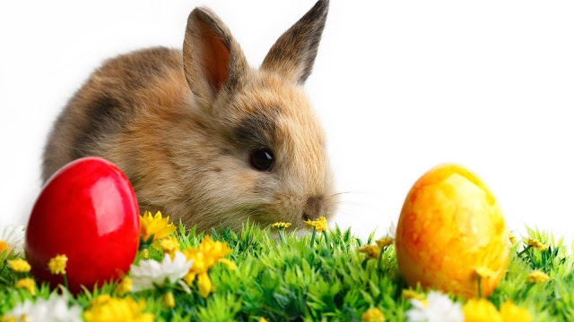 happy easter wallpaperes
