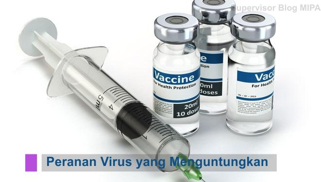 pemanfaatan virus, peranan virus bagi kehidupan manusia, kegunaan virus, manfaat virus, virus yang menguntungkan