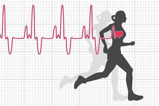 Scientists found out the correlation between number of heartbeats and mortality: Research
