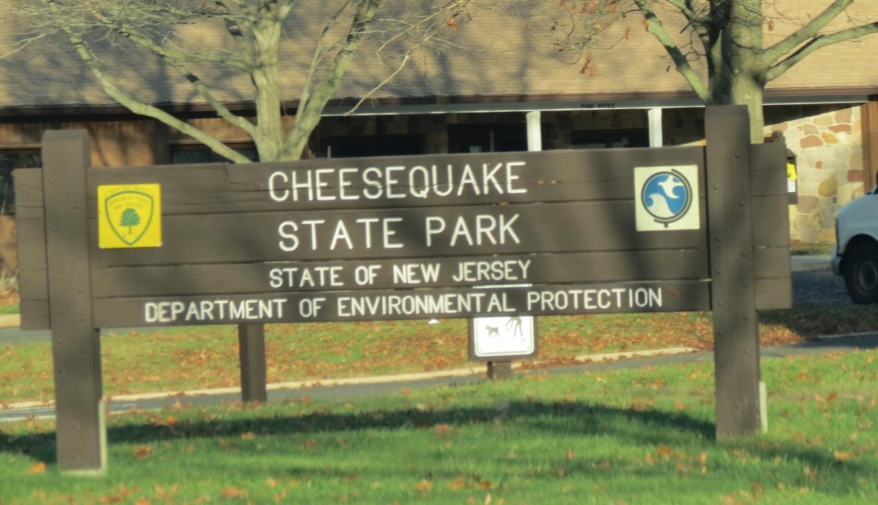 Gone Hikin': Cheesequake State Park, NJ - White Trail