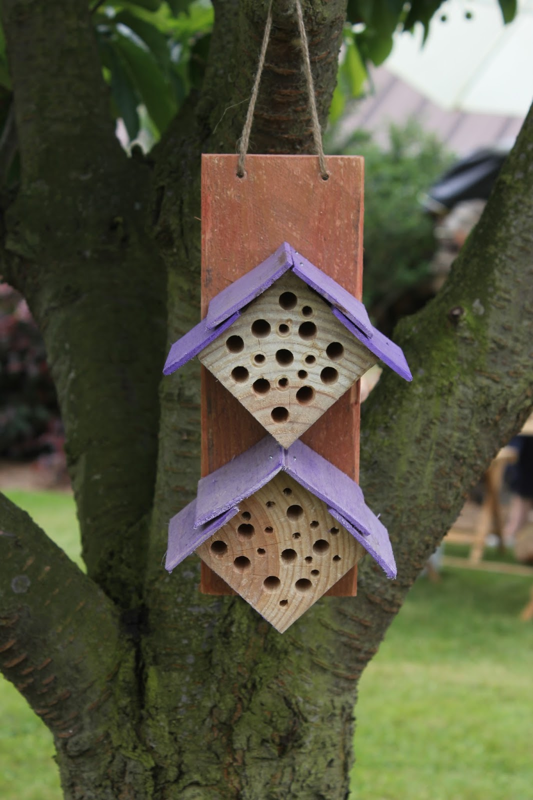 Bug house for hanging in trees