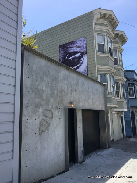 exterior of garage gallery at The David Ireland House in San Francisco, California