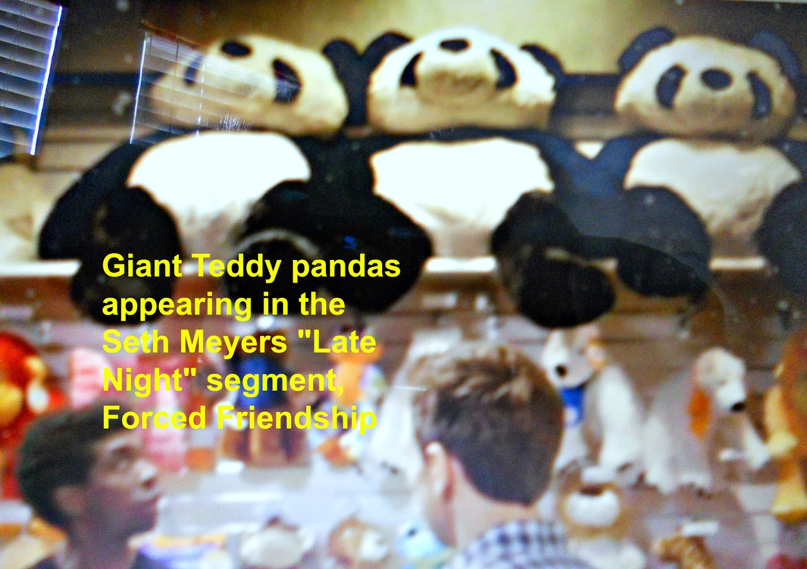 Giant Teddy panda bears