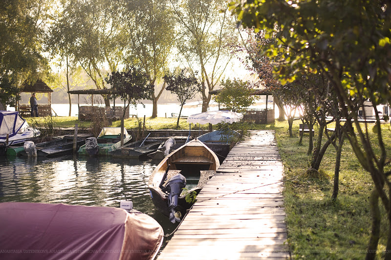 на берегу Дуная красивый рассвет