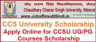 CCS University Scholarship 2017