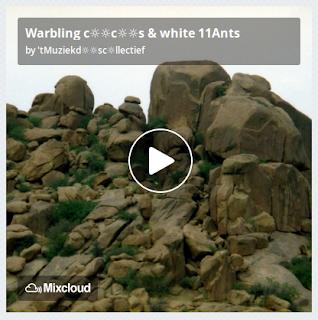 https://www.mixcloud.com/straatsalaat/warbling-ccs-white-11ants/