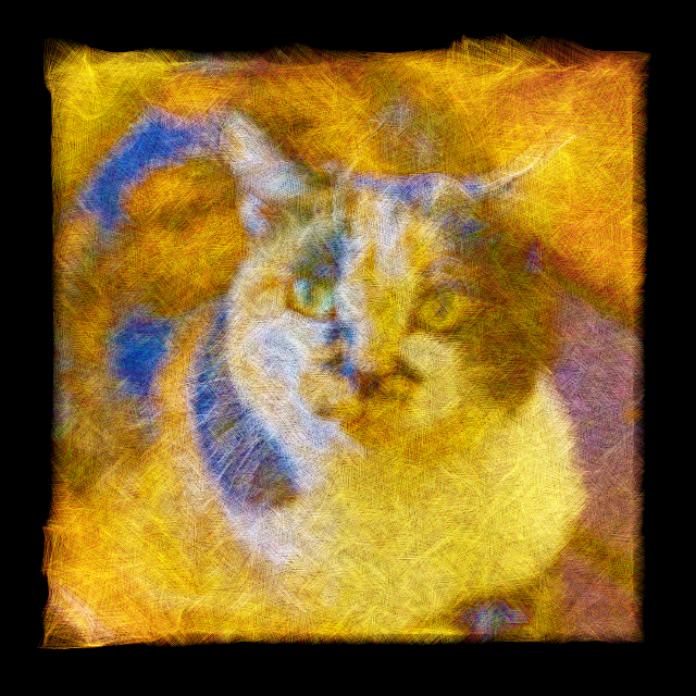 RustiCat makes a photo into the painting that drew with thin lines.
