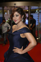 Payal Ghosh aka Harika in Dark Blue Deep Neck Sleeveless Gown at 64th Jio Filmfare Awards South 2017 ~  Exclusive 154.JPG