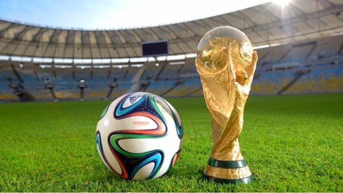 See How Much The FIFA World Cup Trophy Is Worth Revealed