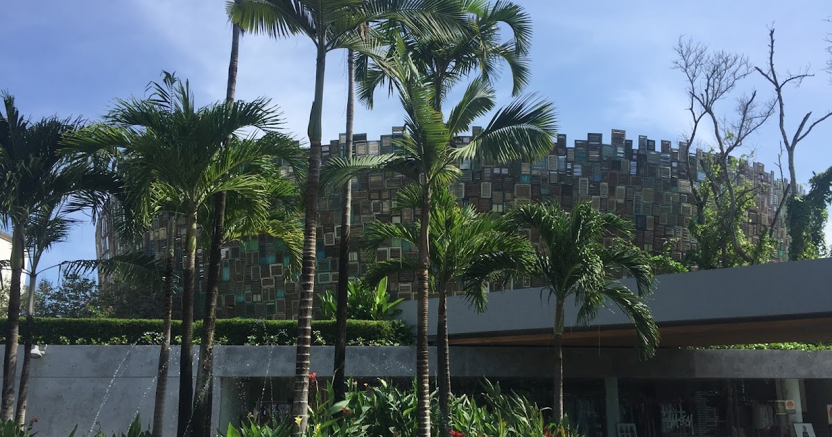 Beach Club Reviews Hamilton Island