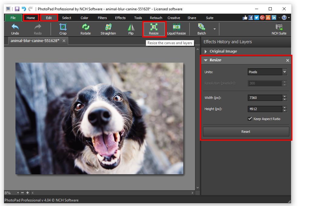How to Resize a Picture | Do More With Software