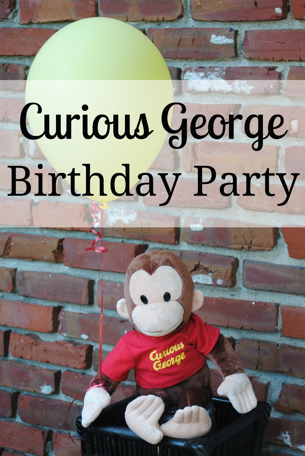 Noodles Third Birthday Curious George Kids Party