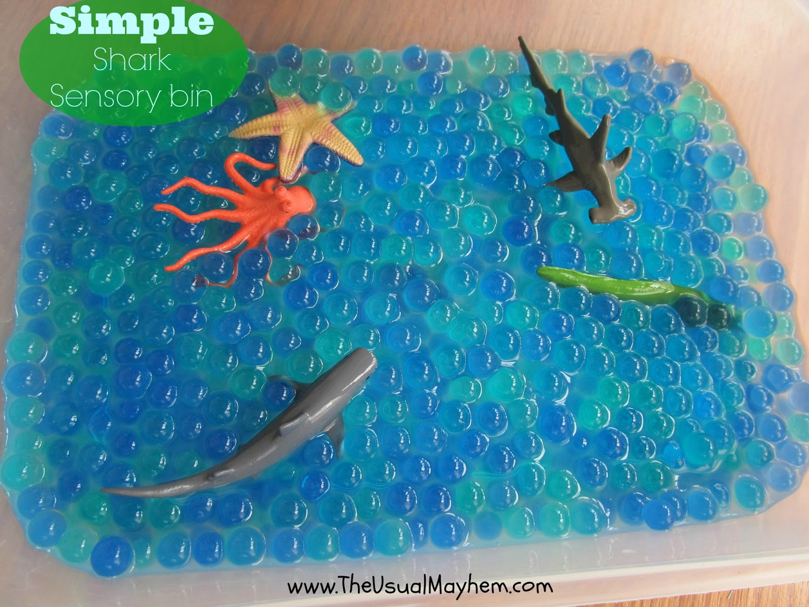 Sharks Activities Books And Sensory Play For Children