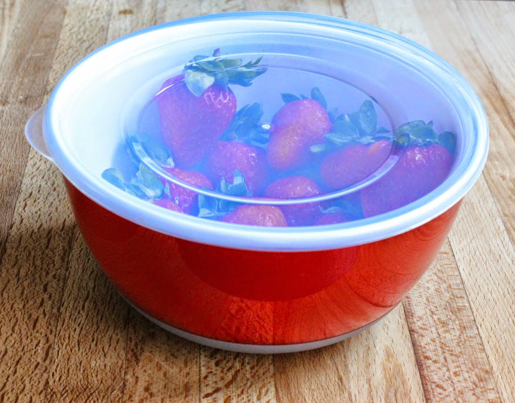 OXO Good Grips Red Bowl with lid