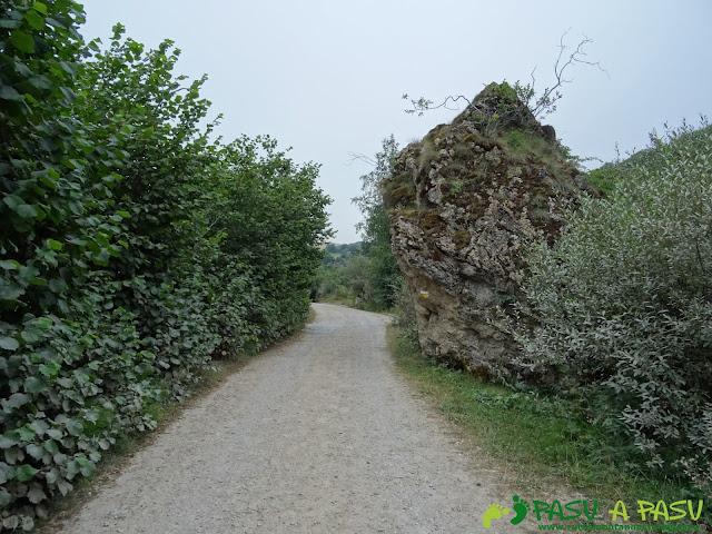 Ruta del Valle del Lago: pista y piedra con señalización