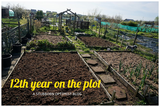 12th year on the plot - a stubborn optimist blog - C. Gault 2019