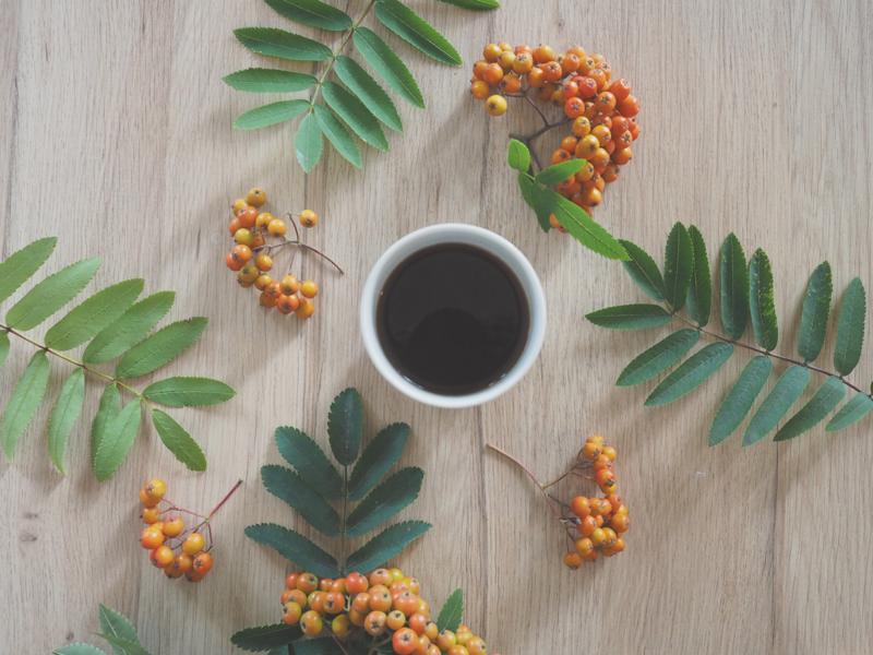 kahvia ja pihlajanmarjoja