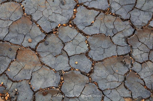 spękana ziemia na polu geotermalnym w Islandii ma ciekawą strukturę