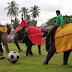Tempat dan Harga Tiket Masuk Taman Way Kambas,Taman Gajah Lampung Timur