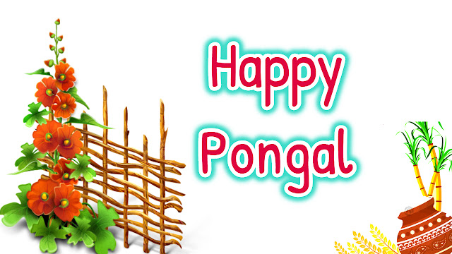 pongal festival images