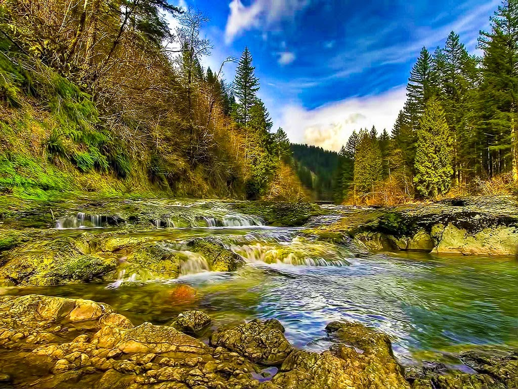 Global Pictures Gallery: 3D Nature Full HD Wallpapers