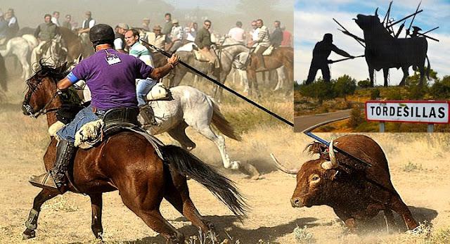 Castilla y León prohíbe la muerte del Toro de la Vega