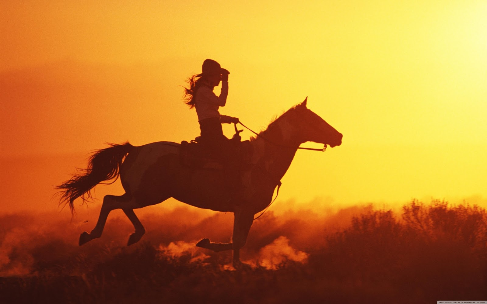 Top   Wallpaper Horse Yellow - girl_on_horse-wallpaper-3840x2400  Best Photo Reference_661094.jpg