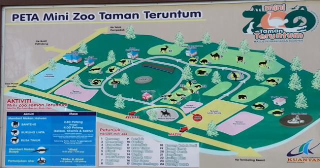 Mini-Zoo-Taman-Teruntum-kuantan