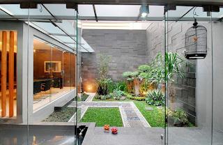 Taman indoor dengan bonsai dolar