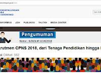 Prioritas Rekrutmen CPNS 2018
