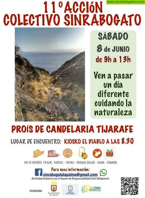 11º Acción Colectivo Sinrabogato en el Proís de Candelaria