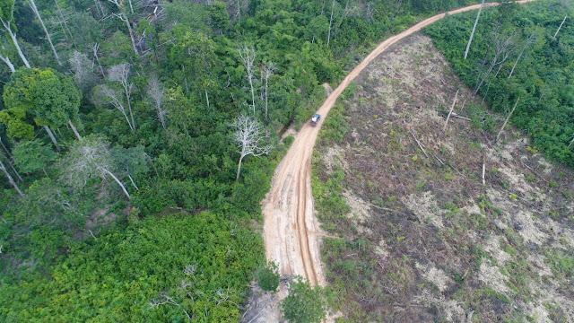 Aroma Ilegal dari Gudang PT Restorasi Ekosistem Indonesia