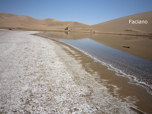 Gobi蒙古戈壁,法姿優乾洗頭乾洗髮Faciano Dry Shampoo