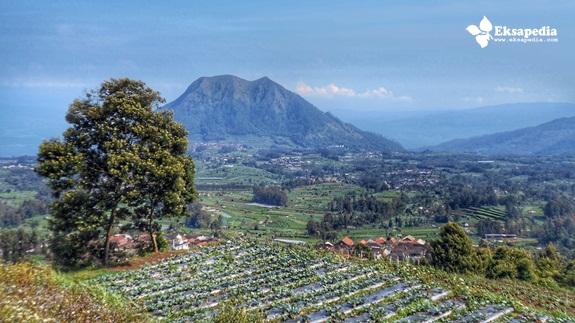 Pemandangan Bukit Harapan Cuntel